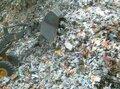 Recyclage-&-Glas